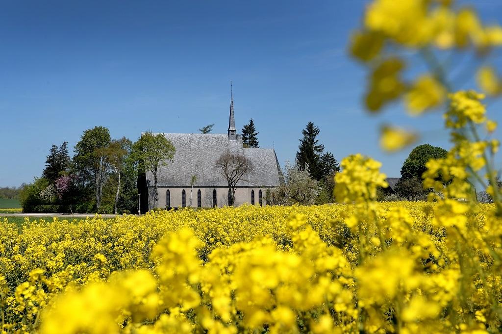 Schwanenkirche